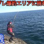 【三重県・錦磯】グレ爆釣エリアに挑む!!双子島の東で神潮が到来するか?