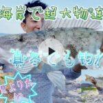 【打ち込み釣り】真冬でも爆釣り出来る!