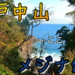 【東伊豆】富戸の中山に行ってみた!!【フカセ釣り、メジナ釣り】