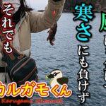 【海釣り】寒くても。雨がふっても。釣りに行きたい!①【千葉】