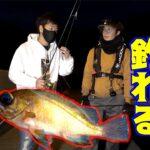 初心者の為の簡単メバル釣り講座!!【夜の堤防】