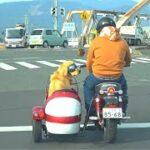 #2 モンキーサイドカーを愛犬用に大改造!!