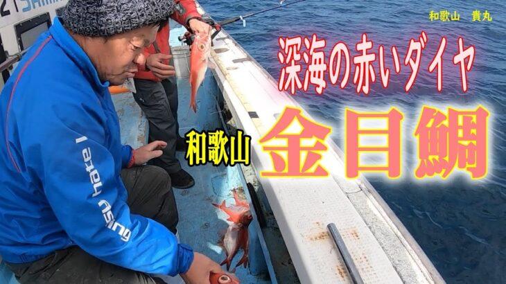 関西の深海釣りの聖地!和歌山の金目鯛釣り2021 2 06 貴丸・金目鯛釣り編