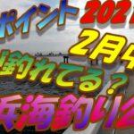 【愛知県釣りポイント】豊浜漁港、豊浜海釣り公園2021年2月中旬