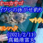 【神奈川県の真鶴(まなづる)沖でイワシの泳がせ釣り】(2021/2/11)真鶴港富丸
