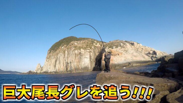 柏島のA級磯でロクマル尾長グレを追う!!