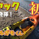 【海釣り】初HITカヤックフィッシング!海の上って気持ちいい!【シーバス】
