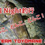 【ドンコ爆釣】山田湾 Night釣行 Vol.1
