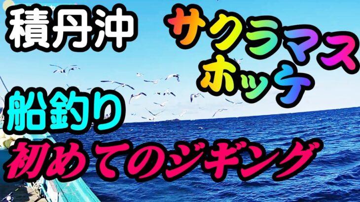 【釣り】北海道積丹 サクラマス・ホッケジギング 船釣り(石狩小樽から遠征):[Ship fishing] Sakuramasu hockey jigging