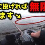 真冬にとあるルアーを沈めるだけで無限に魚が釣れる場所がありました【ベイトタックル】
