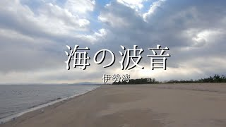【海の波音】海の波音を聞きながら過ごす浜辺 撮影をしていたら海鳥が近づいてきました!〜伊勢湾〜