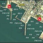 【和歌山県田辺市|人気!】『湊浦漁港周辺|みなとうら』の海釣りガイド