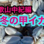 和歌山中紀で冬の甲イカ釣り