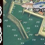 【和歌山県田辺市】『戎漁港 えびすぎょこう』の海釣りガイド
