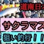 【道南日本海】サクラマスを狙いに行くも残念!!