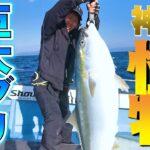 【ジギング】釣りに挑戦!あにい一人で漁船に乗っけたら、、、