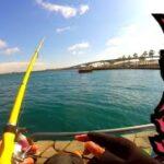 激安コンパクトロッド使って真冬の海釣り公園でチヌ狙ってみた。