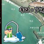 【和歌山県みなべ町】『岩代漁港・岩代海岸』の海釣りガイド
