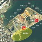 【和歌山県白浜町|人気!】『ホテル川久付近』の海釣りガイド