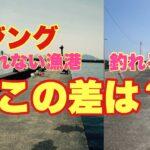 アジが釣れる漁港と釣れない漁港の違いはココ!!