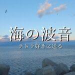 【海の波音】テトラに打ち寄せる穏やかな波の音と美しい空を眺める〜伊勢湾〜