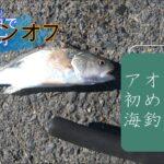 アオウオ釣り師、初めての海釣り釣行記