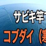 瀬戸内海釣り 瀬戸内海のど真ん中 魚島 サビキ釣り竿 (おもちゃみたいな竿)でもコブダイなら釣れんじゃね?