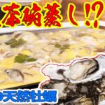 大量の天然牡蠣の巨大茶碗蒸しをホットプレートで作る!!