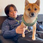 【犬×猫】釣りよかハウスでのおまけ♪