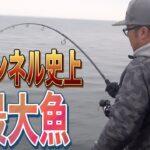 【海釣り】九州のメジャースポットで寒ブリを狙ってみたww【巨大魚】