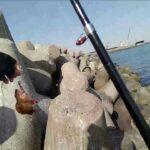 春のカサゴ釣り~1日目三重県霞埠頭にて