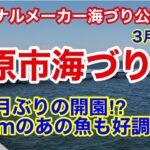 【市原市海づり施設】速報⁉︎休業明けの海釣り公園に行ってみました⁉︎3月下旬の好調な魚は?2021.3