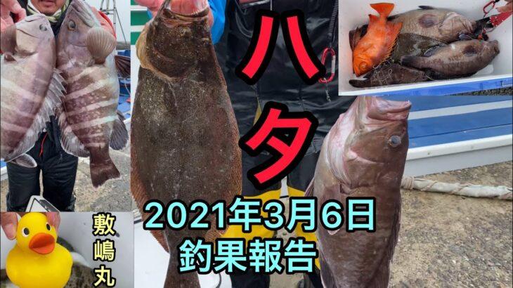 2021年3月6日 フグ釣り、ハタヒラメ釣り釣果報告