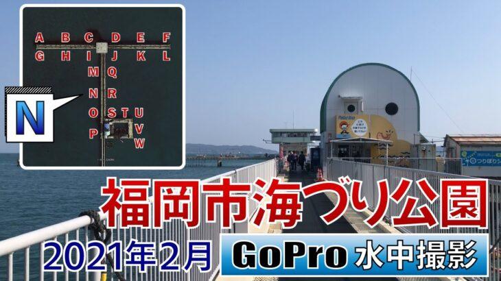 福岡市海づり公園でGoPro沈めてみた【ポイント N】