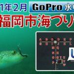 福岡市海づり公園でGoPro沈めてみた【ポイント U,V,W】