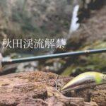 【渓流解禁】ファインテールエデンで低活性ヤマメ釣り 【HFCとコラボ】