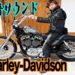 突如現れた謎のハーレー!Harley-Davidsonデビューしました!!【全員ツーリング】
