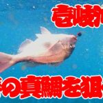 タイラバ!!SLJ!! in 壱岐沖@きずなまりん 2/3