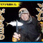 【いやこれ釣れるん…?濁った海でアジングやってみた!】SOTvol,81
