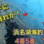 【水中映像】goproぶん投げてみたら…浜名湖新居弁天海釣り公園(4番5番T字堤)【砂の穴の正体も判明】
