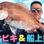 【鯛サビキ】真鯛を釣って船上で鯛だしラーメンをつくり!食す!in 岡山県宇野港発 瀬戸内海【釣りガール】【ツーサムズアップ】さん