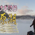 【桧原湖ワカサギ釣り】氷上ワカ様 japan icifishing