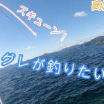 グレを追う!高知県須崎で磯釣り!