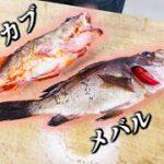 【高級魚】少ない身で満腹になる料理を思いついちゃった!