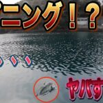 【海釣り】最高すぎる!九州は釣り堀の魚もポテンシャルが高すぎる!!【爆釣】