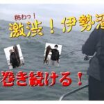 【海釣り情報  船釣り情報】激渋!伊勢湾に鯛カブラで挑む!
