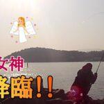 【磯釣り】海の女神降臨!一瞬の「ゾーン」に入ったみたい♪こうなったら辞められない!