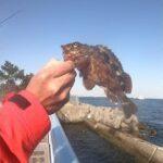 大黒海釣り施設のテトラに向かって投げる釣り