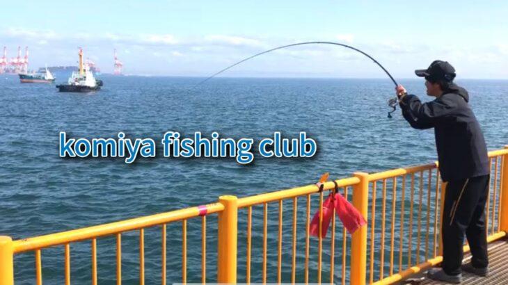 磯子海づり施設でフカセ釣り メジナを狙っていたはずが?!