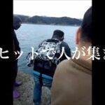 海釣り始めた初心者に大物ヒットで人が集まる!!波止場騒然…和歌山県和歌山市 加太大波止
